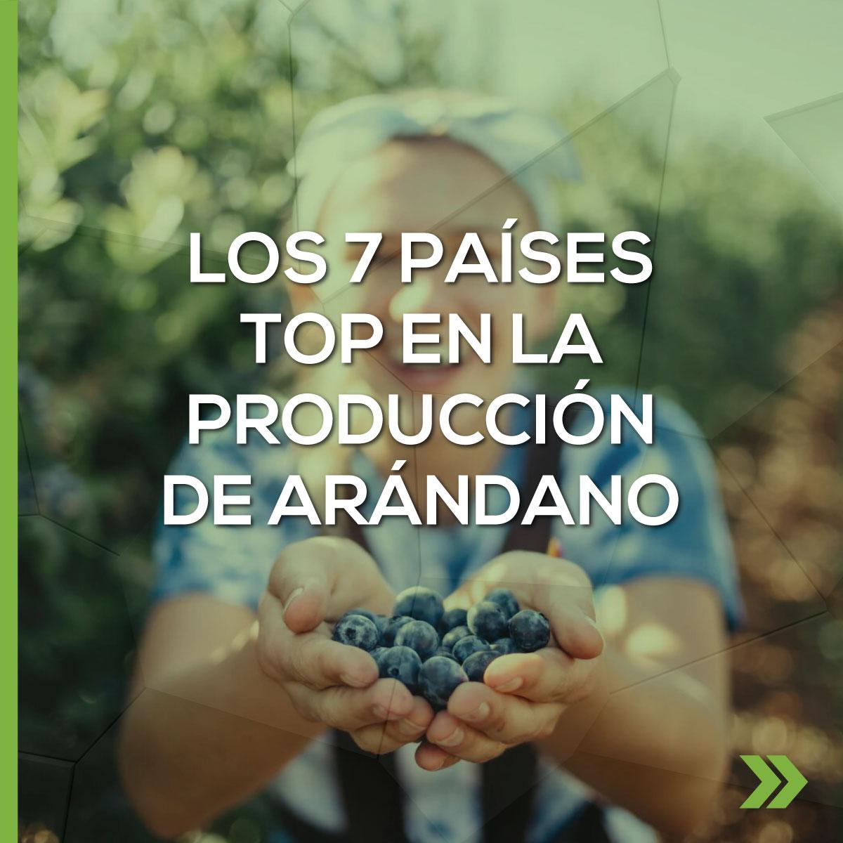 Los 7 países Top en la Producción de Arándano